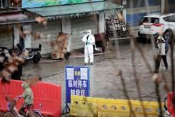2020武漢風暴》陸三部門宣布 即日起禁止野生動物交易