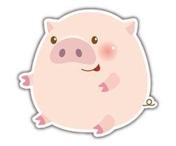 庚子鼠年 生肖旺運 歡喜迎新春-豬 求自我成長 組貴人共好系統