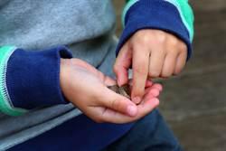 童零用錢變雙倍遭疑偷錢 真相反被讚:長大不得了