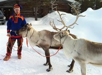 2020武漢風暴》北歐第一起 芬蘭聖誕老人的故鄉確診一病例
