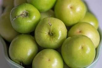 纖維質比蘋果和水梨高!這水果可降高血壓、膽固醇