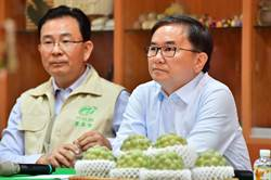 武漢肺炎影響釋迦出口 農委會研議因應方案