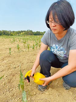 青農護有機農地 反對變綠能基地