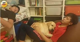 【用愛領航3】每晚打地鋪陪睡 小導盲犬成全家寶貝