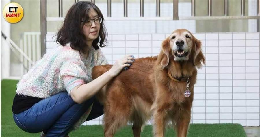 陳碧文因家中愛犬接連離世,決定將死別的悲傷化作大愛,擔任導盲犬寄養家庭以培育「開路天使」。(圖/趙世勳攝)