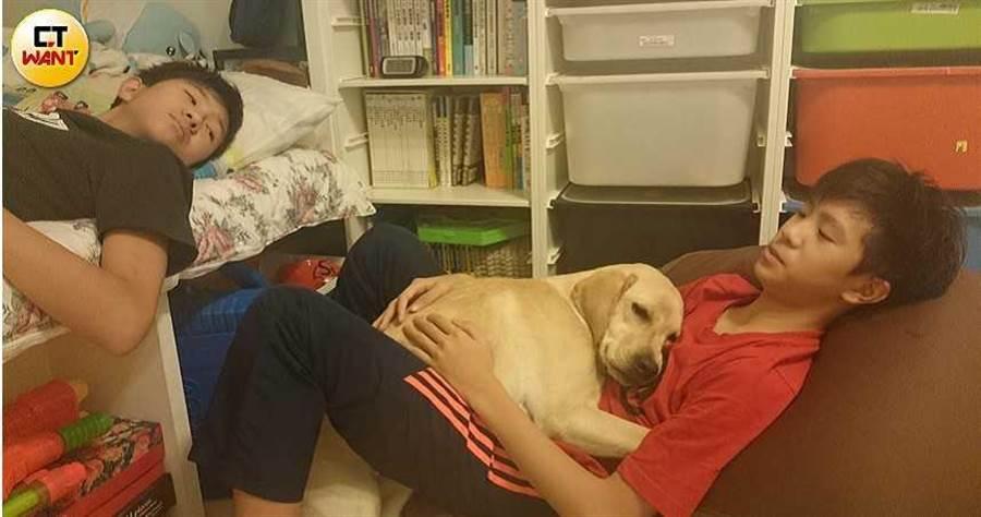 陳碧文一家都把小導盲犬當成寶貝,喜怒哀樂都受其牽動,投注所有心力關心呵護。(圖/讀者提供)