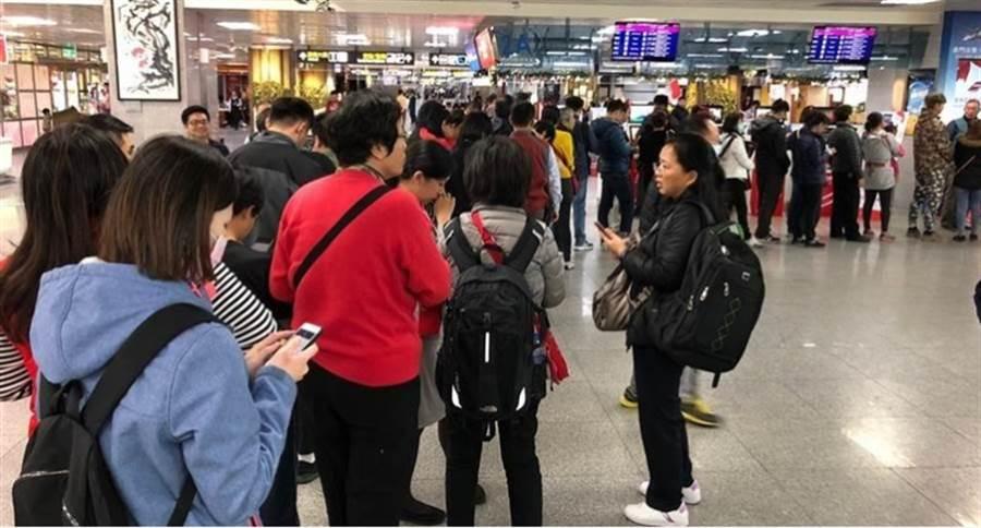 台灣與義大利中斷直航,突發狀況使業者、旅客亂成一團。(本報資料照)