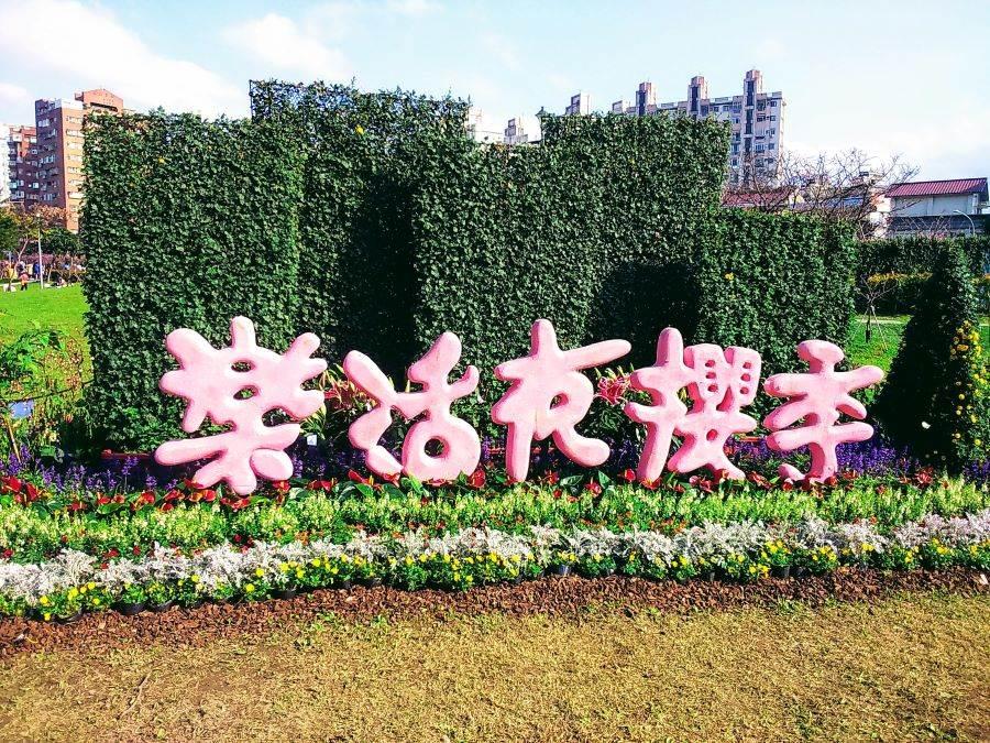 內湖樂活公園「樂活夜櫻季」。