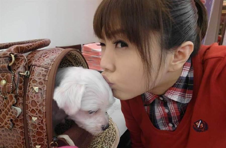 劉樂妍駁斥返台避難說,澄清只是為了出庭。(翻攝自劉樂妍微博)