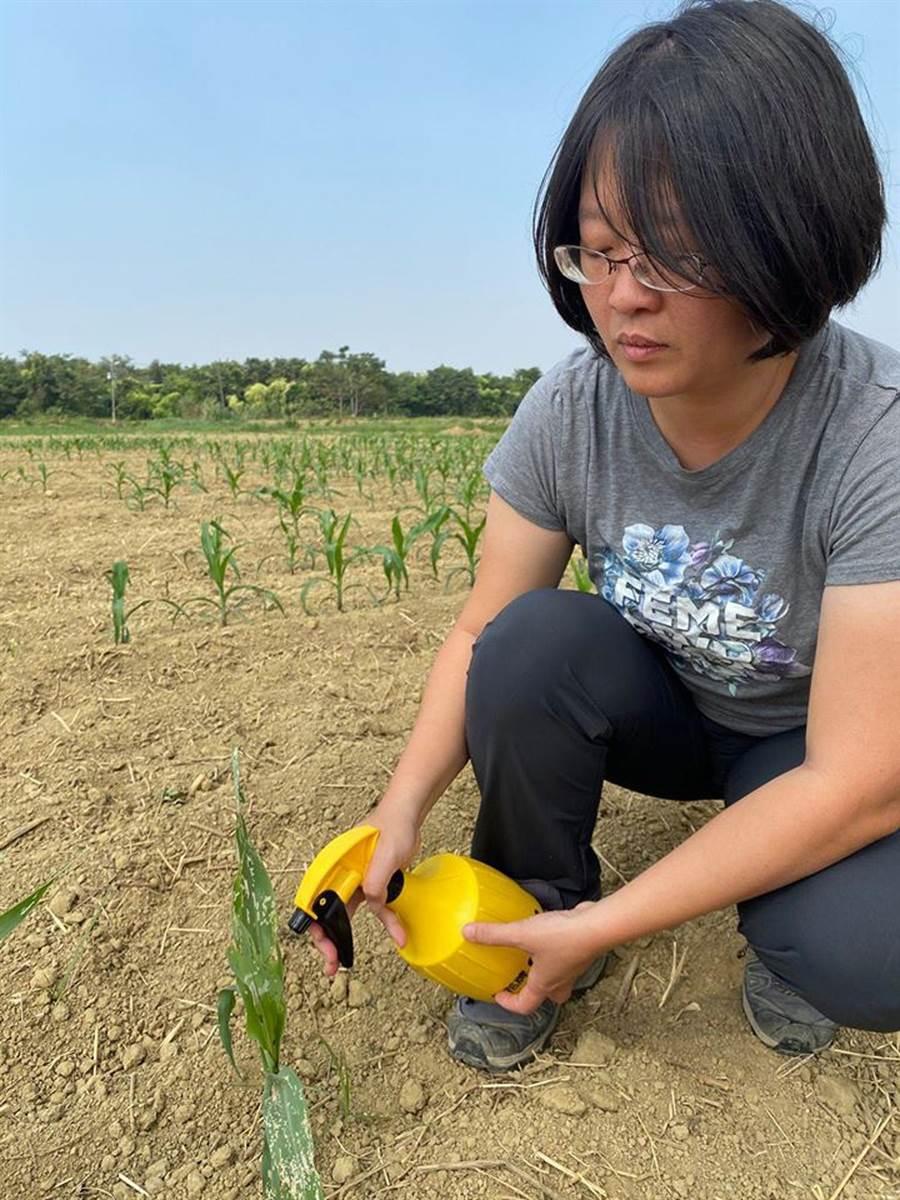 甜心牧場負責人徐紫珊透過公民行動網站發聲明反對市府徵收港墘農場開發綠能產業園區。(摘自徐紫珊臉書)
