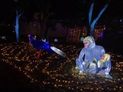 2020台灣燈會在台中 里山禾樂燈區推廣當地精神