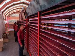 鹽水蜂炮將開炸  台南市消防局檢查炮城顧安全