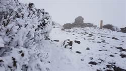 雪山下雪了!積雪達16公分 網讚:美的像詩