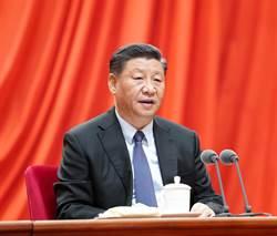 2020武漢風暴》疫情嚴峻 習近平3度在黨中央對疫情防控做出指示
