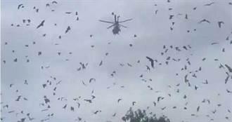 30萬「蝙蝠龍捲風」籠罩城市 直升機嚇到不敢降落
