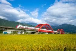 台灣封城哪裡能活最久?網一面倒