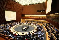 2020武漢風暴》挺台入世衛層級升 美與歐盟代表27國替台發言