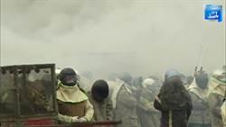 鹽水蜂炮開炸 起炮儀式沖天震耳揭開序幕