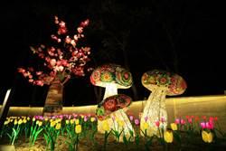 2個月編上百朵櫻花 台灣燈會「綺麗花都」展新社風情