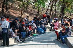 寶可夢現身台灣燈會 玩家從美國來台中抓寶