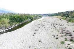 港口溪連2年發現6種新陸蟹 滿州鄉公所護岸工程計畫引憂