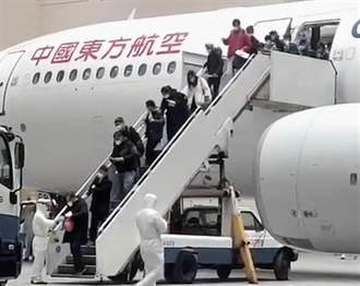 武漢首批247名返台台胞名單怎決定?湖北省台辦這麼說