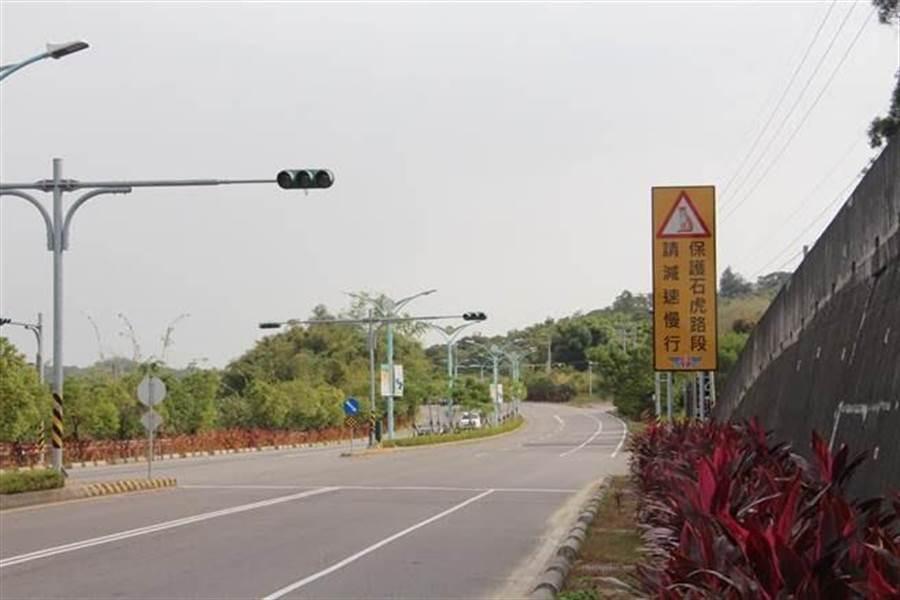 防治路殺,台13甲2月15日起實施夜間降速,時速從原60公里降為50公里。(本報資料照)