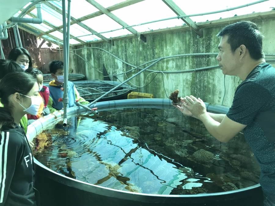 佳冬養殖戶吳國振帶小朋友親手種珊瑚,透過近距離接觸發現,神祕的海底世界其實很貼近生活。(謝佳潾攝)