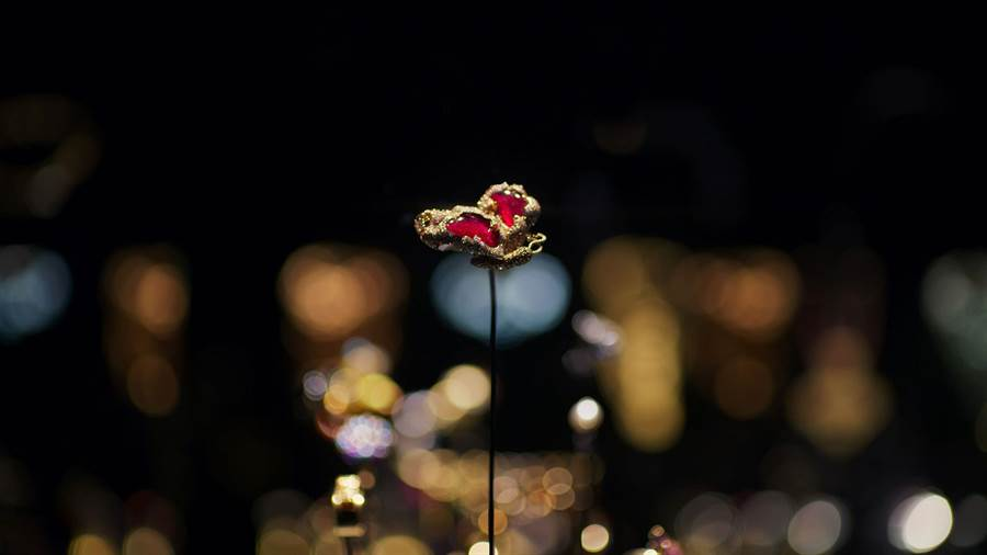 趙心綺CINDY CHAO的第一件大師系列作品《紅寶側飛蝴蝶》,榮獲巴黎裝飾藝術博物館收藏。(CINDY CHAO提供)