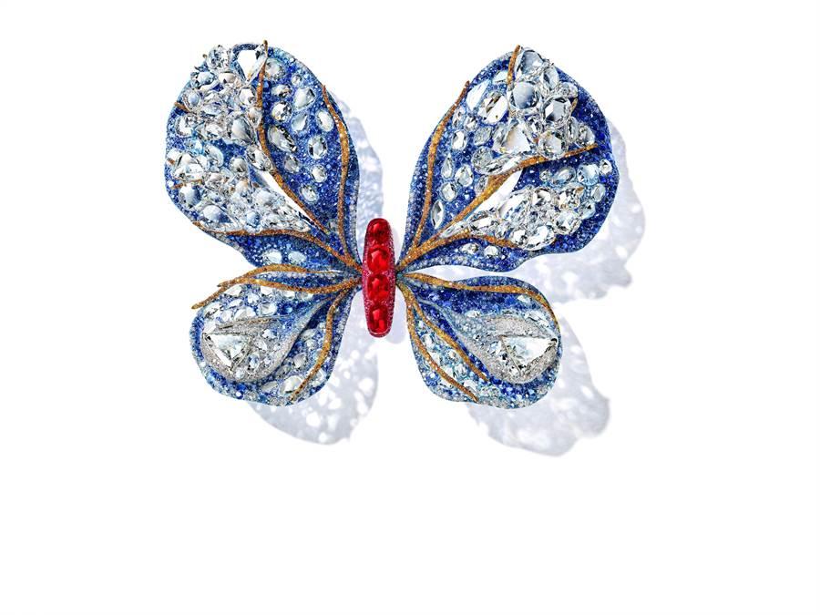 CINDY CHAO的2019年度蝴蝶作品《極光蝴蝶》,是近期新作。(CINDY CHAO提供)