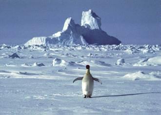 紀錄!南極大陸錄到18.3度高溫