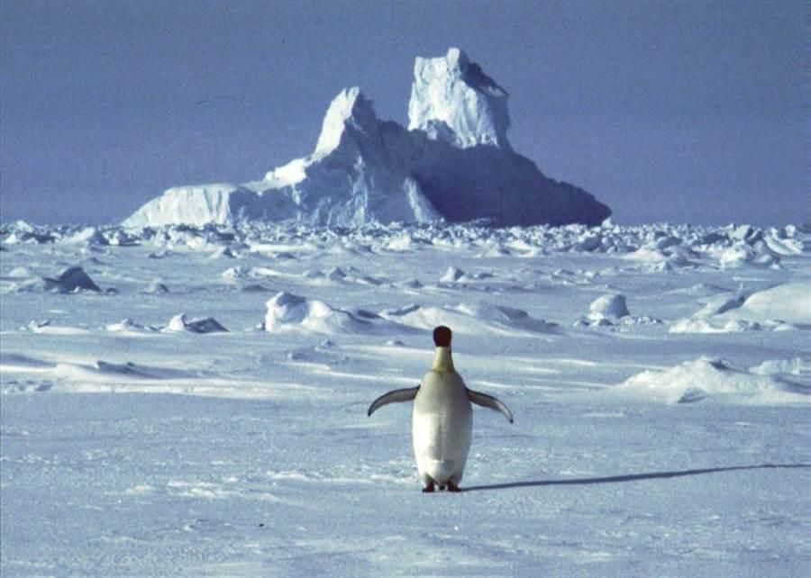 南極洲測得史上最高氣溫。(圖/美聯社)