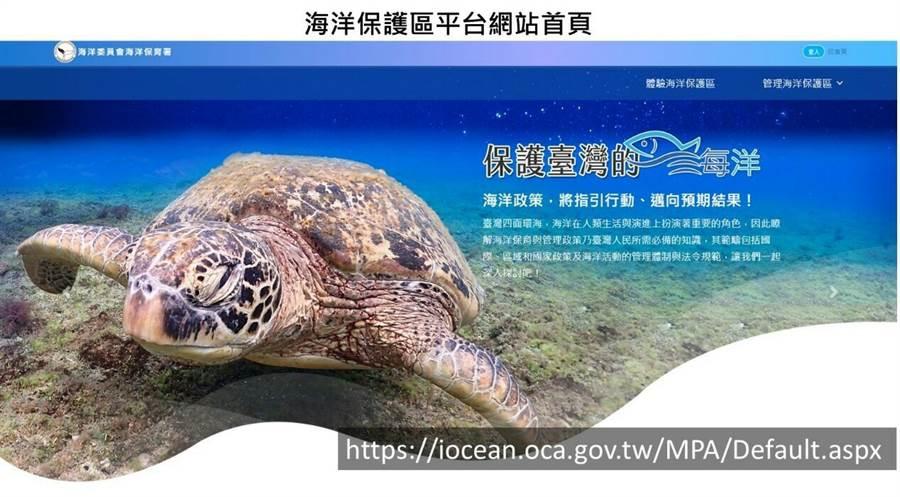 台灣豐富海洋生態,也能看得到海龜。(圖取自海洋保育網官網)