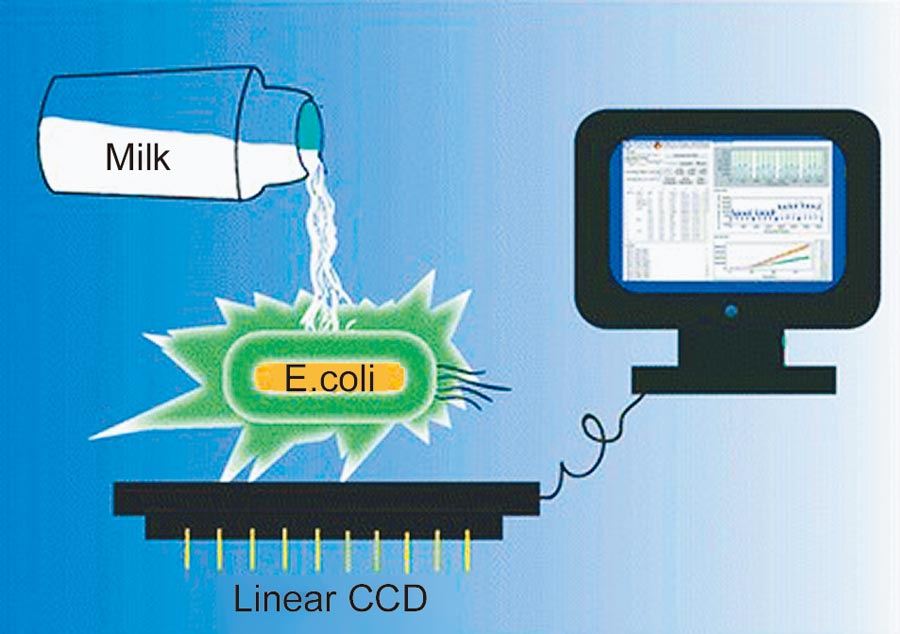 中研院攜手以色列希伯來大學開發「微生物生物感應器」,能簡便監測染物。(中研院提供/李侑珊台北傳真)