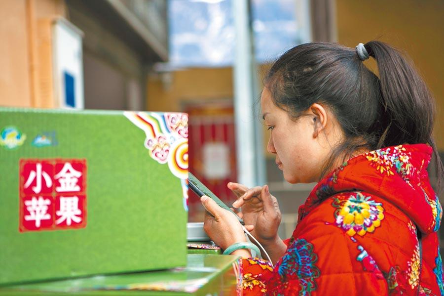 張飛的妻子李萍在四川省阿壩藏族羌族自治州小金縣美興鎮一家快遞公司輸入快遞信息。 (新華社)