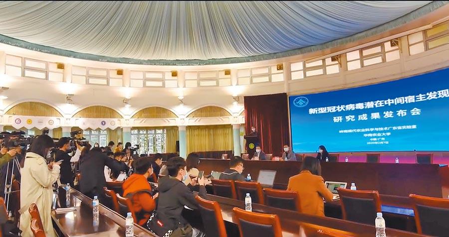 2月7日,華南農業大學舉行研究成果發布會,發現穿山甲為新冠病毒的潛在中間宿主。(截圖自新浪微博@華南農業大學)