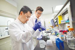 中美聯手戰疫 共享病毒基因序列