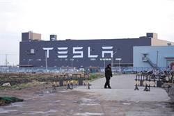 特斯拉上海廠今復工 概念股飆起來