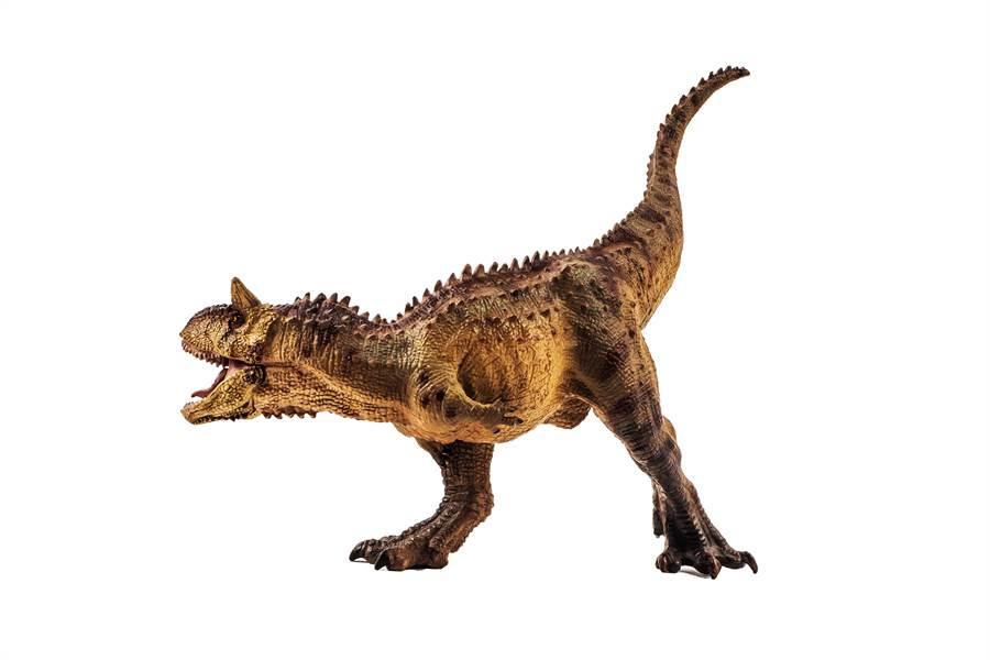 爸為兒買恐龍模型 見實品鄰居嚇歪(示意圖/達志影像)