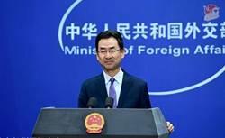 2020武漢風暴》陸外交部:有能力把疫情對經濟影響降至最低