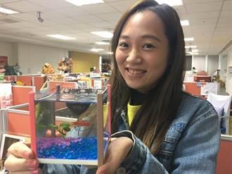 「魚」妳在一起!魚中魚推出520情人告白魚缸