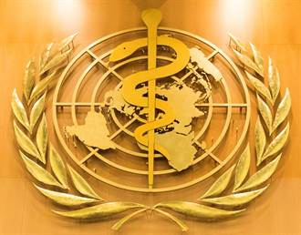 48小時內死亡!奈及利亞104人染怪病 世衛初步調查出爐