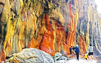 哈尤溪生態之旅 2月預約幾客滿
