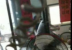 濺血暴力 反芳苑火化場總幹事慘遭10歹徒圍毆