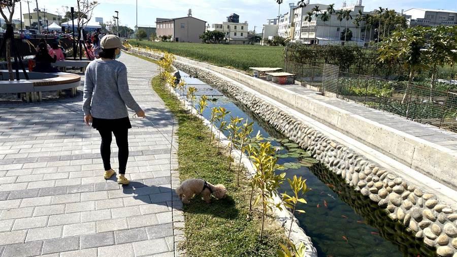 台中市農田水利會無償提供土地,由建設局打造水岸公園,為地方增加休憩綠地。(王文吉攝)