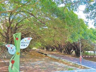 保留綠隧 長勝營區重劃3月啟用