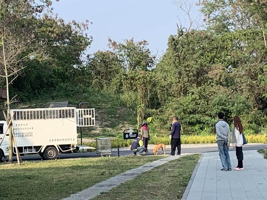 館方13日下午已請台南市動保處協助誘捕這隻浪犬,帶回打疫苗、結紮、植入晶片,日後將安置在沒有開放的員工工作區。(山上花園水道博物館提供/劉秀芬台南傳真)