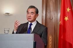 陸外交部長王毅:病毒無國界,需要國際共同應對