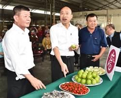 高雄農產品外銷星馬 韓國瑜盼內外銷兼顧