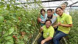 黃偉哲與青農面對面 台南市政府要當好幫手